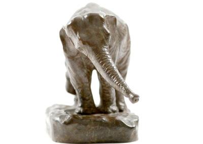 Eléphant-au-piquet-vue-01