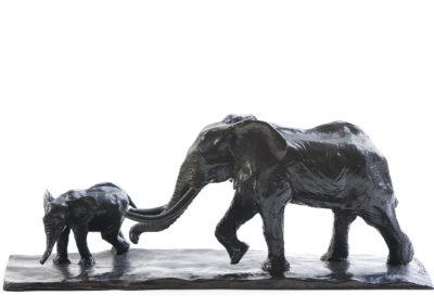 Eléphant-d'Afrique-et-éléphanteau-vue-01