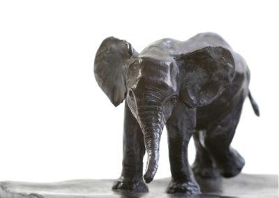 Eléphant-d'Afrique-et-éléphanteau-vue-02