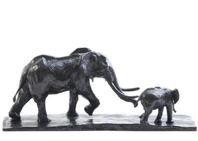 Eléphant-d'Afrique-et-éléphanteau-vue-03