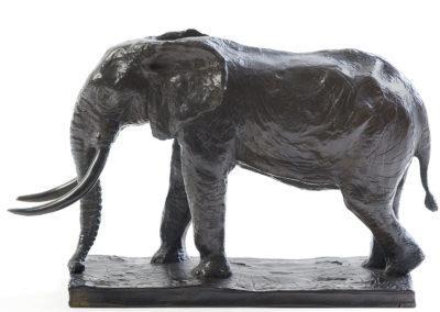 Grand éléphant d'Afrique (ÉPUISÉ)