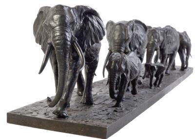 Les-éléphants-d'Afrique-en-marche-vue-03