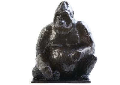Platon-gorille-des-plaines-vue-01
