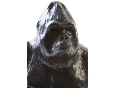 Platon-gorille-des-plaines-vue-02