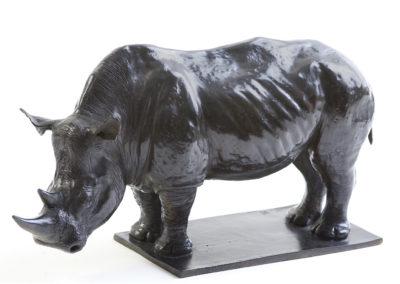 Rhinocéros-blanc-vue-02