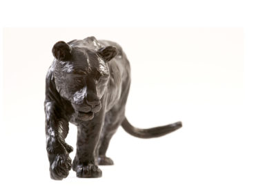 Tigresse-de-Sibérie-vue-02