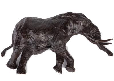 Eléphant-couché-vue-02