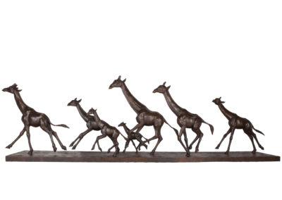 Girafes-au-galop-vue-01