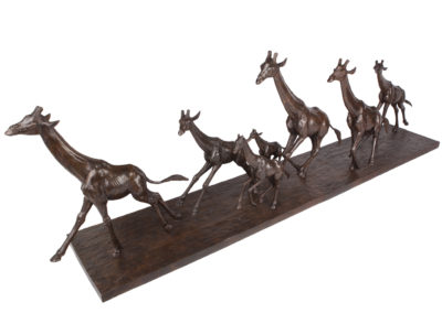Girafes-au-galop-vue-02
