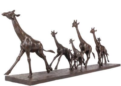 Girafes-au-galop-vue-03