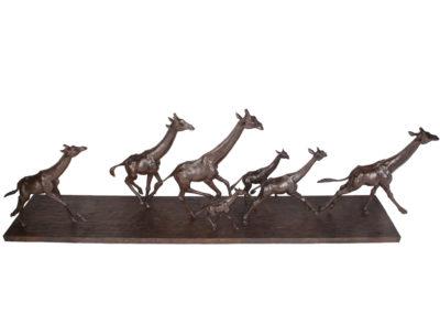 Girafes-au-galop-vue-04
