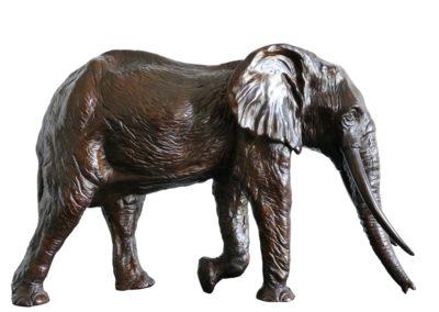 Sixième éléphant
