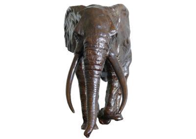 Sixième-éléphant-vue-01