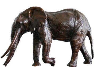 Sixième-éléphant-vue-02