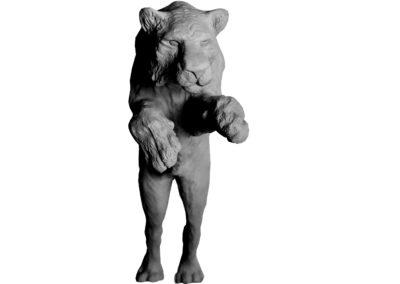 Tigre-sautant-vue-02