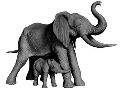 Eléphante d'Afrique protégeant son éléphanteau (projet)