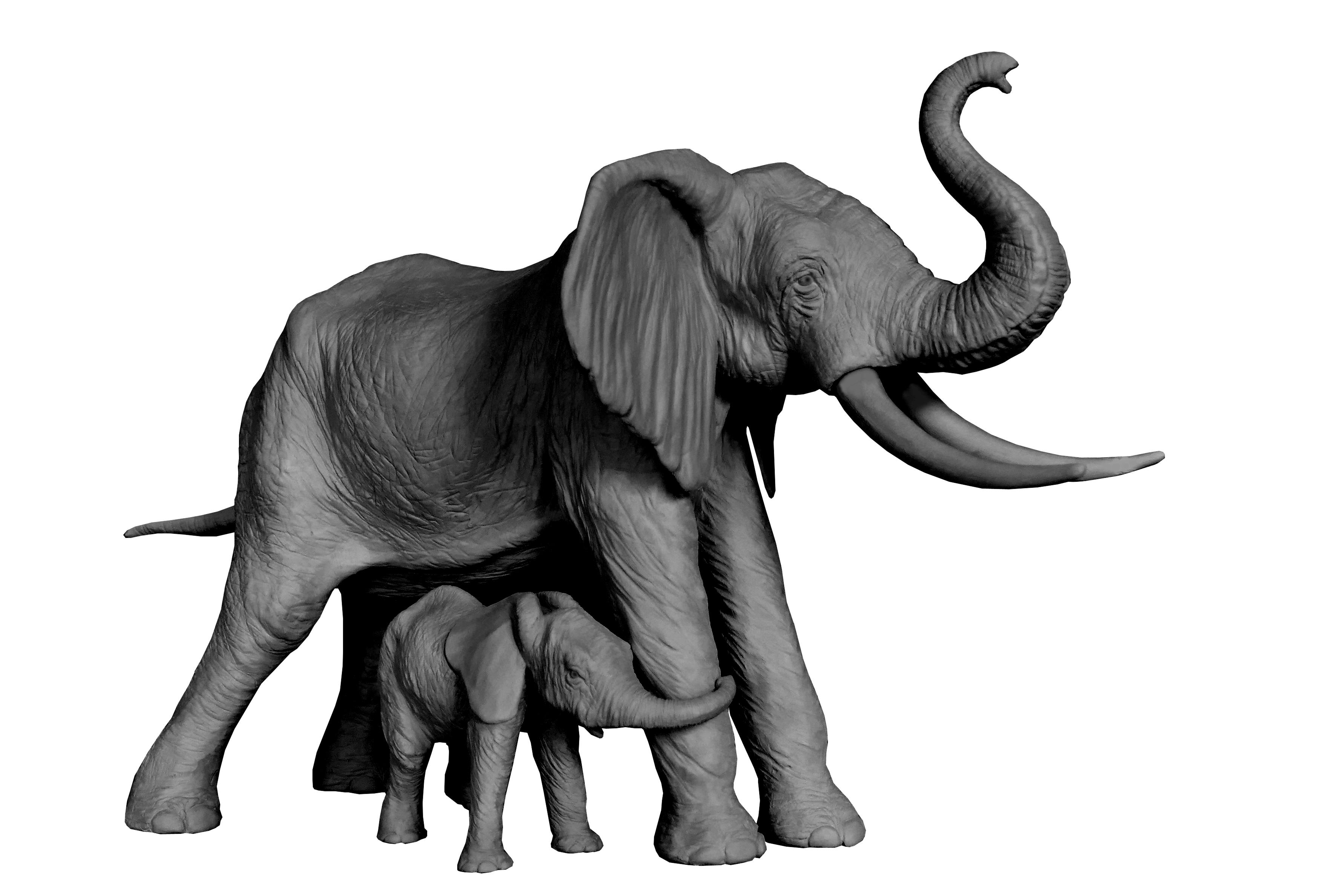 Sculpture Colcombet éléphante d'Afrique et éléphanteau