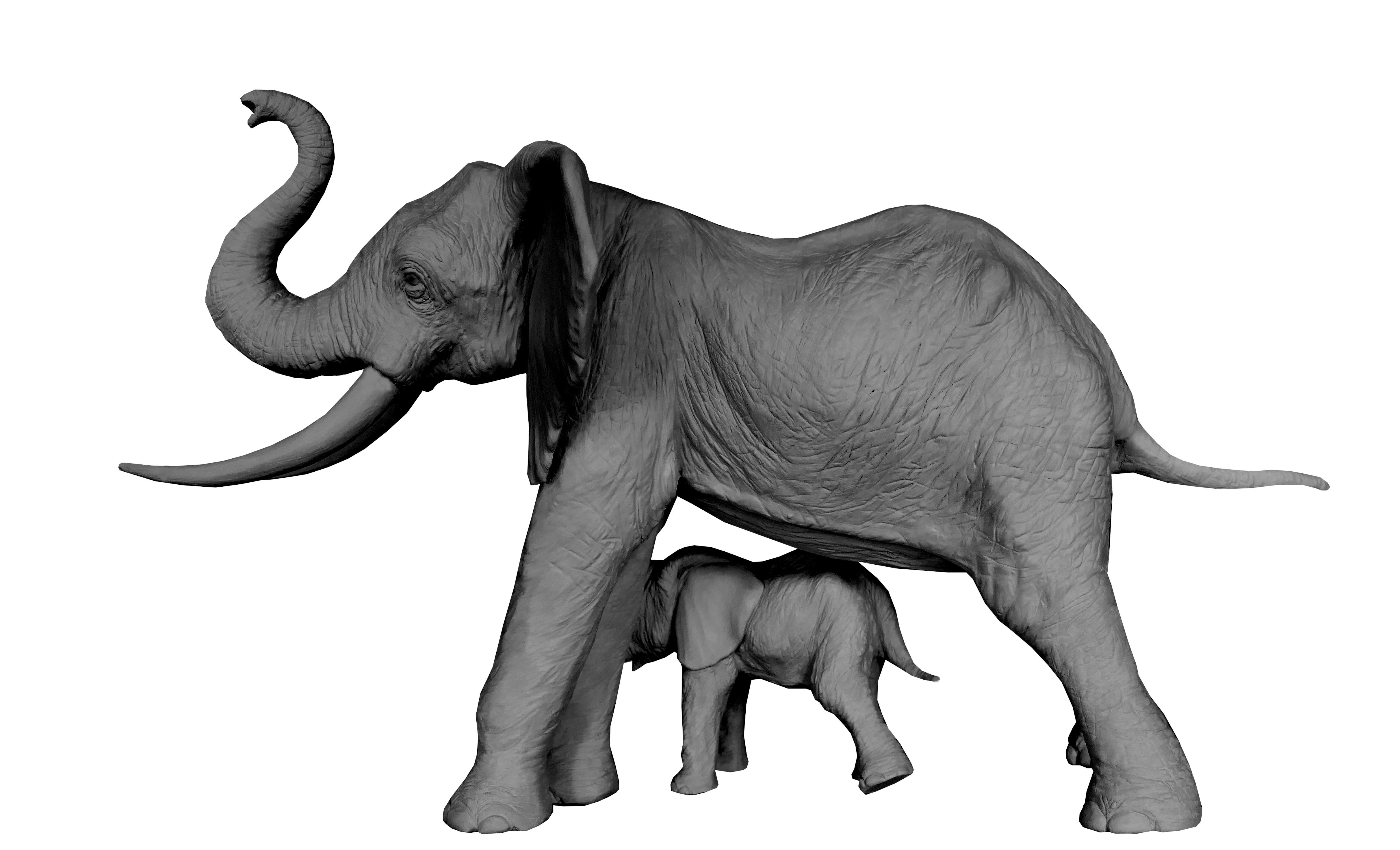 Colcombet sculpture éléphante d'Afrique éléphanteau