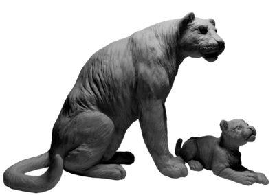 Panthère et son petit (projet)