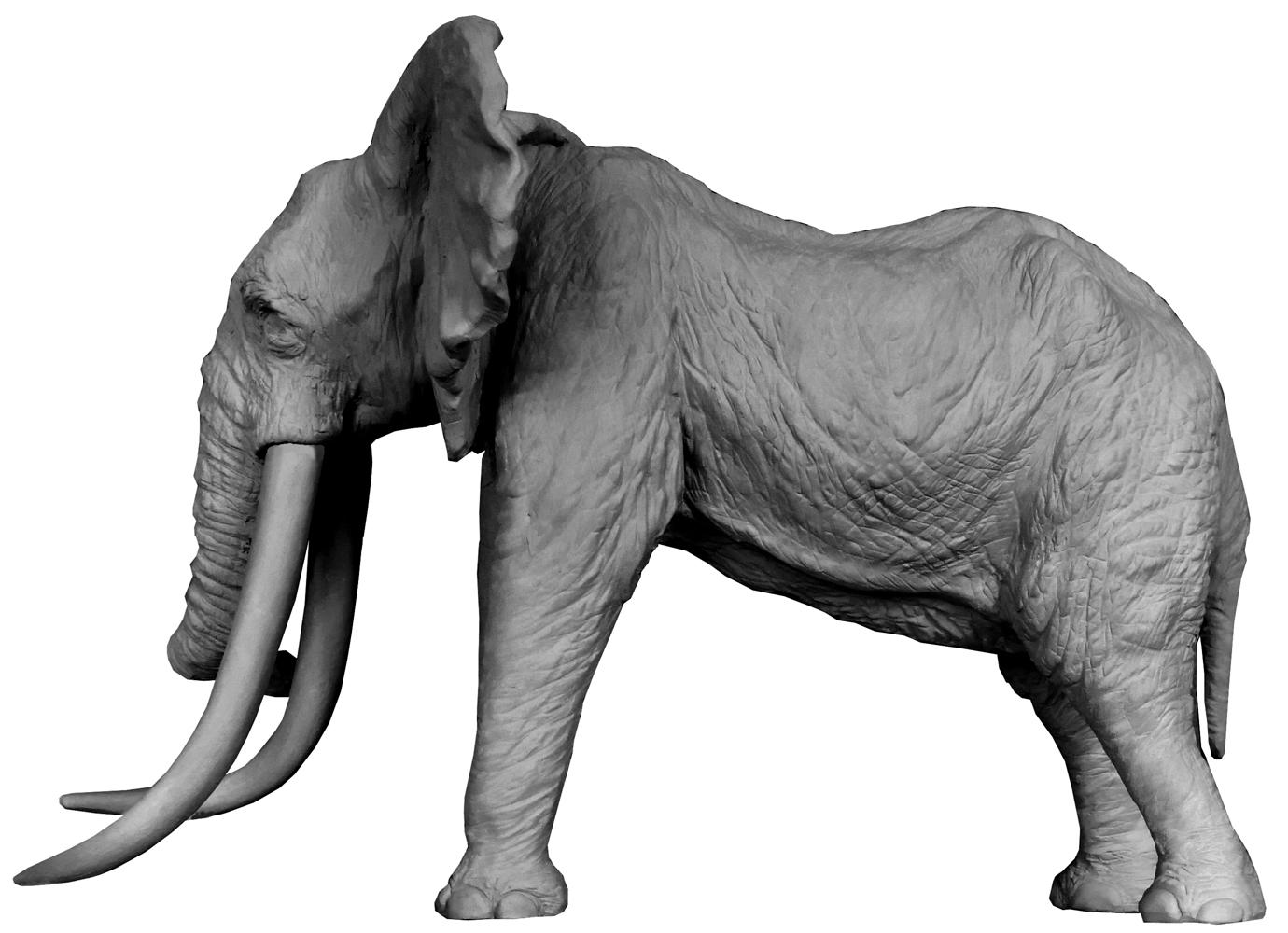 Bronze Colcombet éléphant d'Afrique grandes défenses