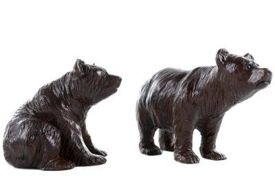 Deux-oursons-vue-01