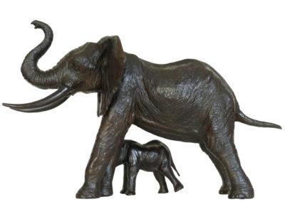 Eléphante-protégeant-son-éléphanteau-vue-03
