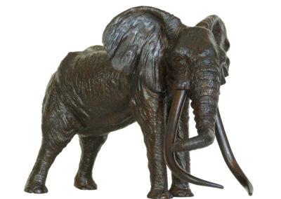 «Le patriarche» – Vieil éléphant d'Afrique