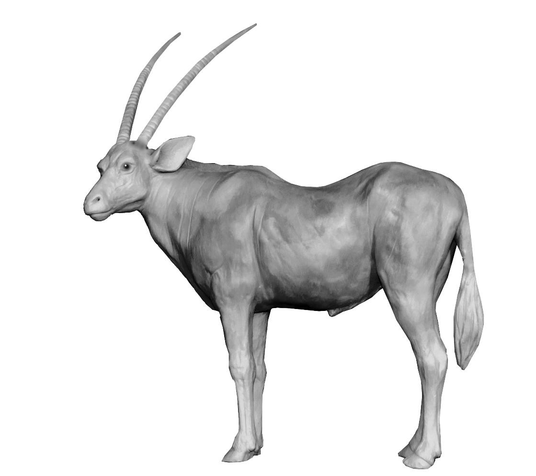 Bronze Colcombet oryx antilope