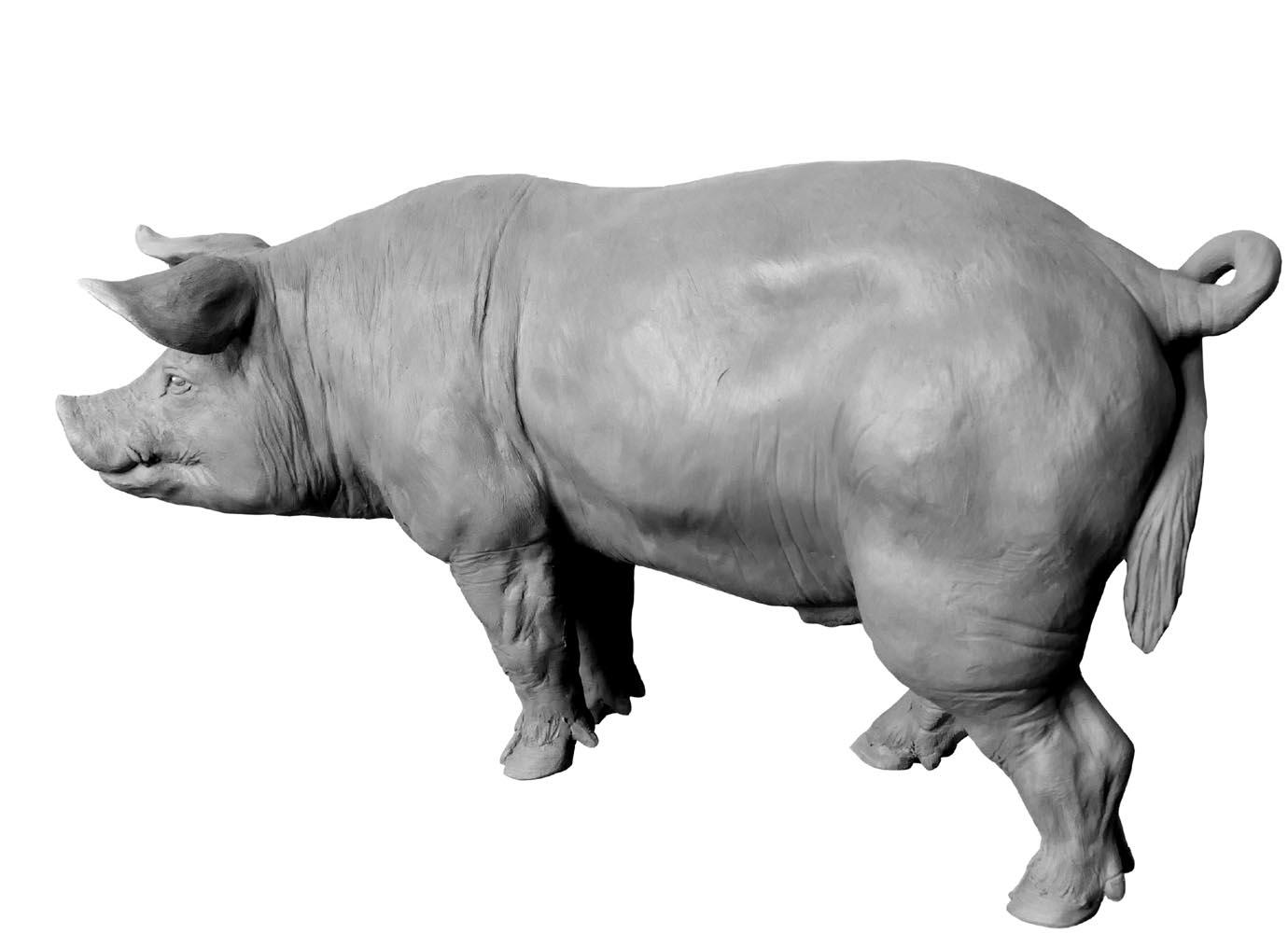 Sculpture Colcombet cochon porc verrat