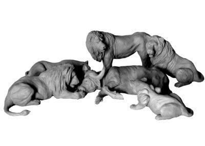 Festin-des-lions-vue-03