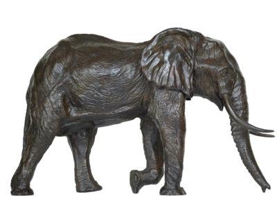 6ème-éléphant-vue-1
