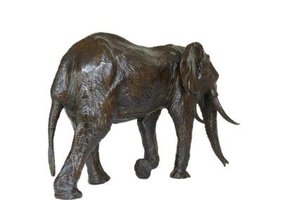 6ème-éléphant-vue-2