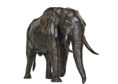 6ème-éléphant-vue-3