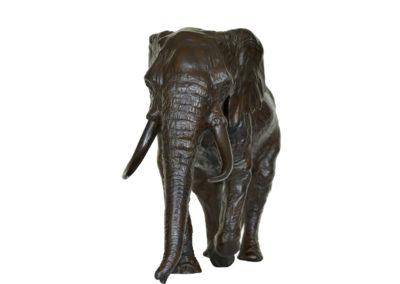 6ème-éléphant-vue-4