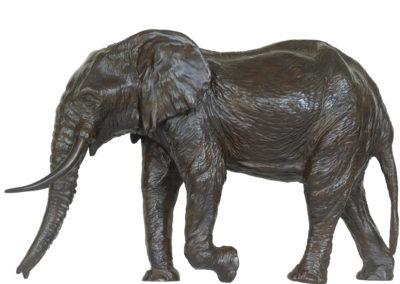 6ème-éléphant-vue-5