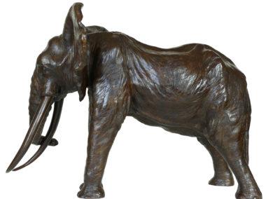 «Le Patriarche» – Vieil éléphant d'Afrique – Agrandissement
