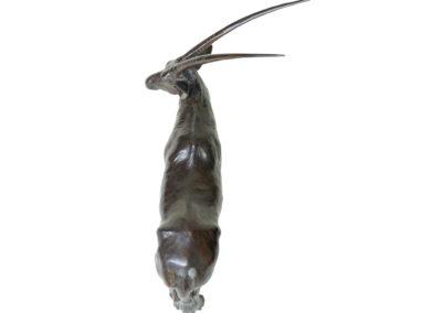 Oryx-vue-2