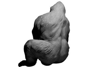 Pythagore-vue-01