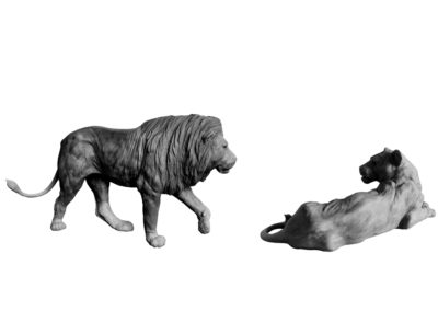 Lion et lionne (projet)