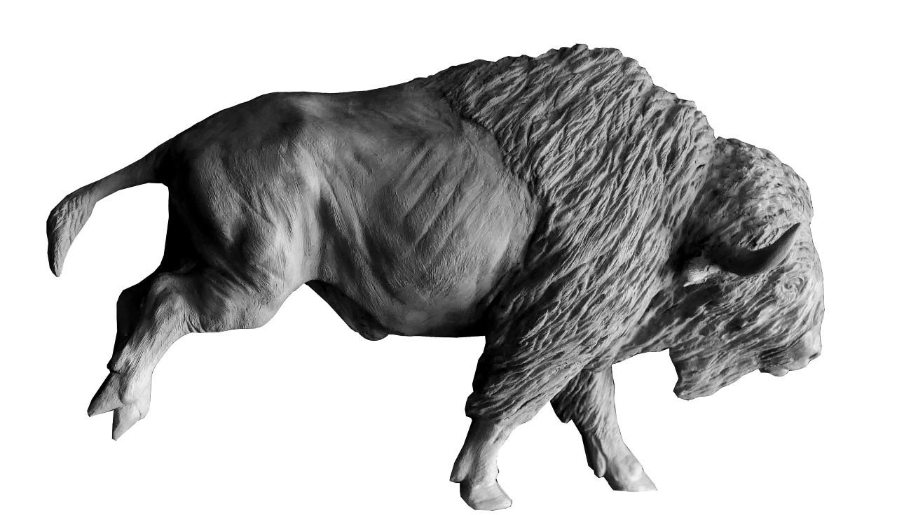 Bronze Colcombet Bison d'Amérique