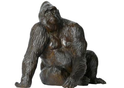 Le gorille Pythagore