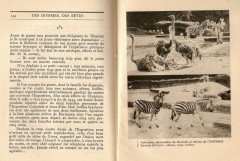 Colcombet Henri Thétard zoo de Vincennes