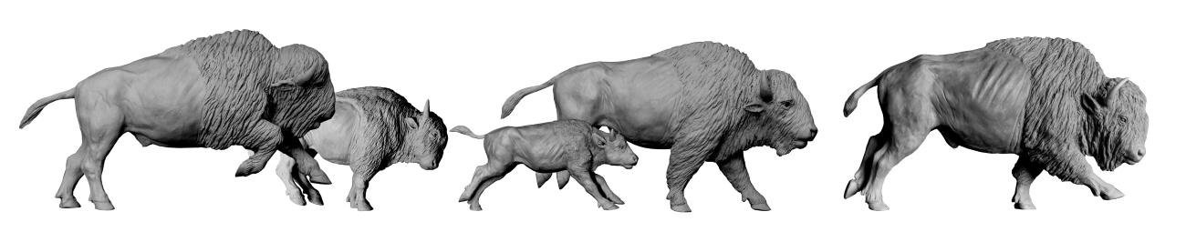 Sculpture bronze Colcombet bisons