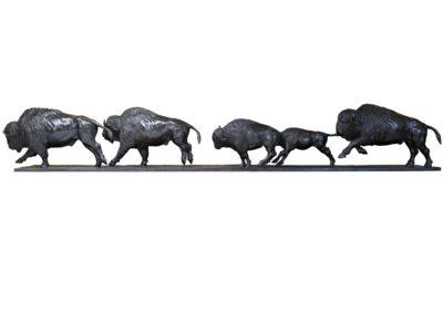 Bisons-d'Amérique-au-galop-vue-02