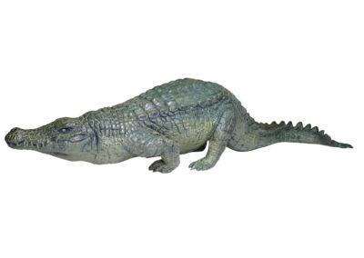Crocodile-du-Nil-marchant-vue-03