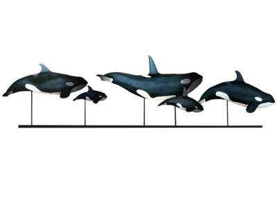 Les orques (Projet)
