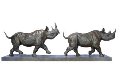 Rhinocéros noirs au trot