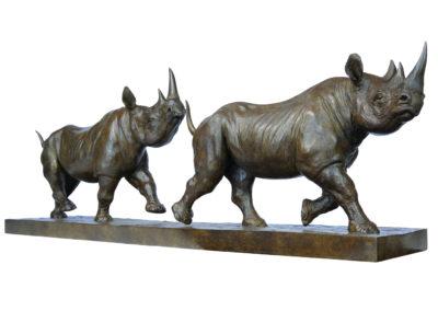 Rhinocéros-noirs-au-trot-vue-01