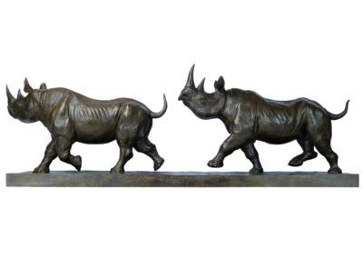 Rhinocéros-noirs-au-trot-vue-02