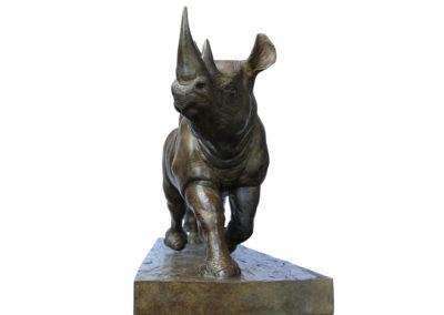 Rhinocéros-noirs-au-trot-vue-03